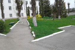 Педагогический колледж ПИ КБГУ после субботника