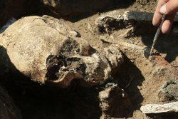 Эрмитаж раскопки