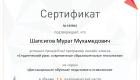 Сертификат участника онлайн-класса «Студенческий урок современные образовательные технологии»