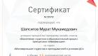 Сертификат участника онлайн-класса «Вовлечение студентов в образовательный процесс принципами геймификации»