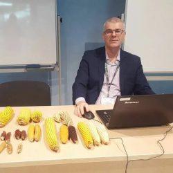 В КБГУ обсуждали достижения в генетике и селекции пищевой кукурузы